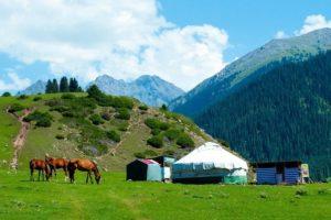 Туры на Алтай из Омска летом
