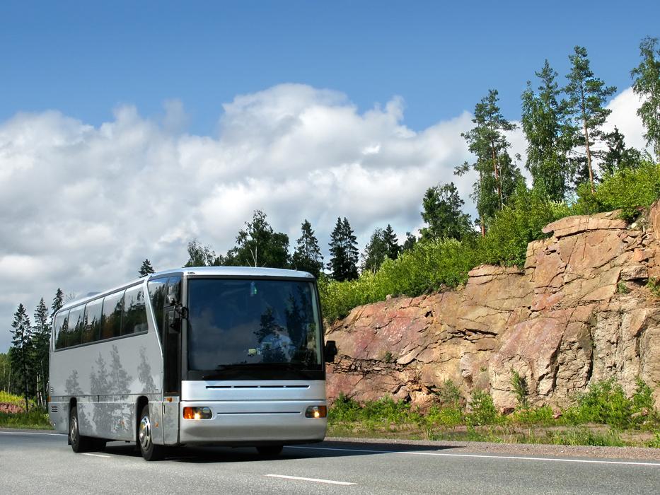 Автобусом до Алтая из Омска
